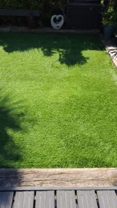 Artifical grass cleaning